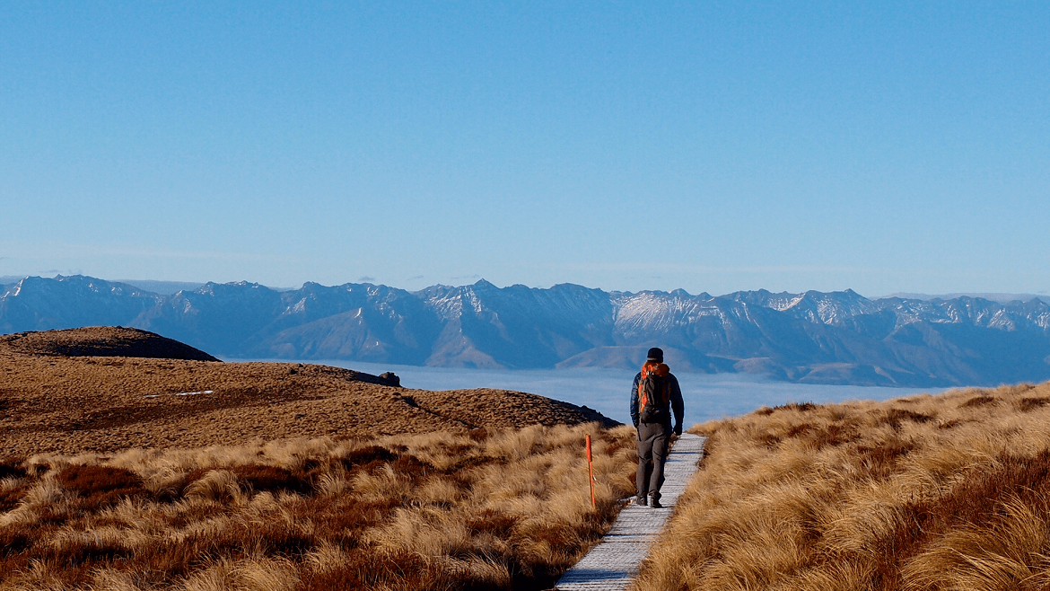 New Zealand experiential travel
